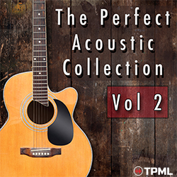 The Perfect Acoustic Collection 2